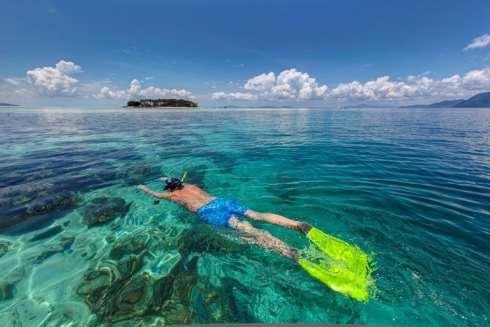 G.Scuba-Diving-Lakshadweep-490x327.jpg