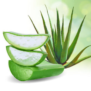 11 Aloe Vera Hacks to Get You By!